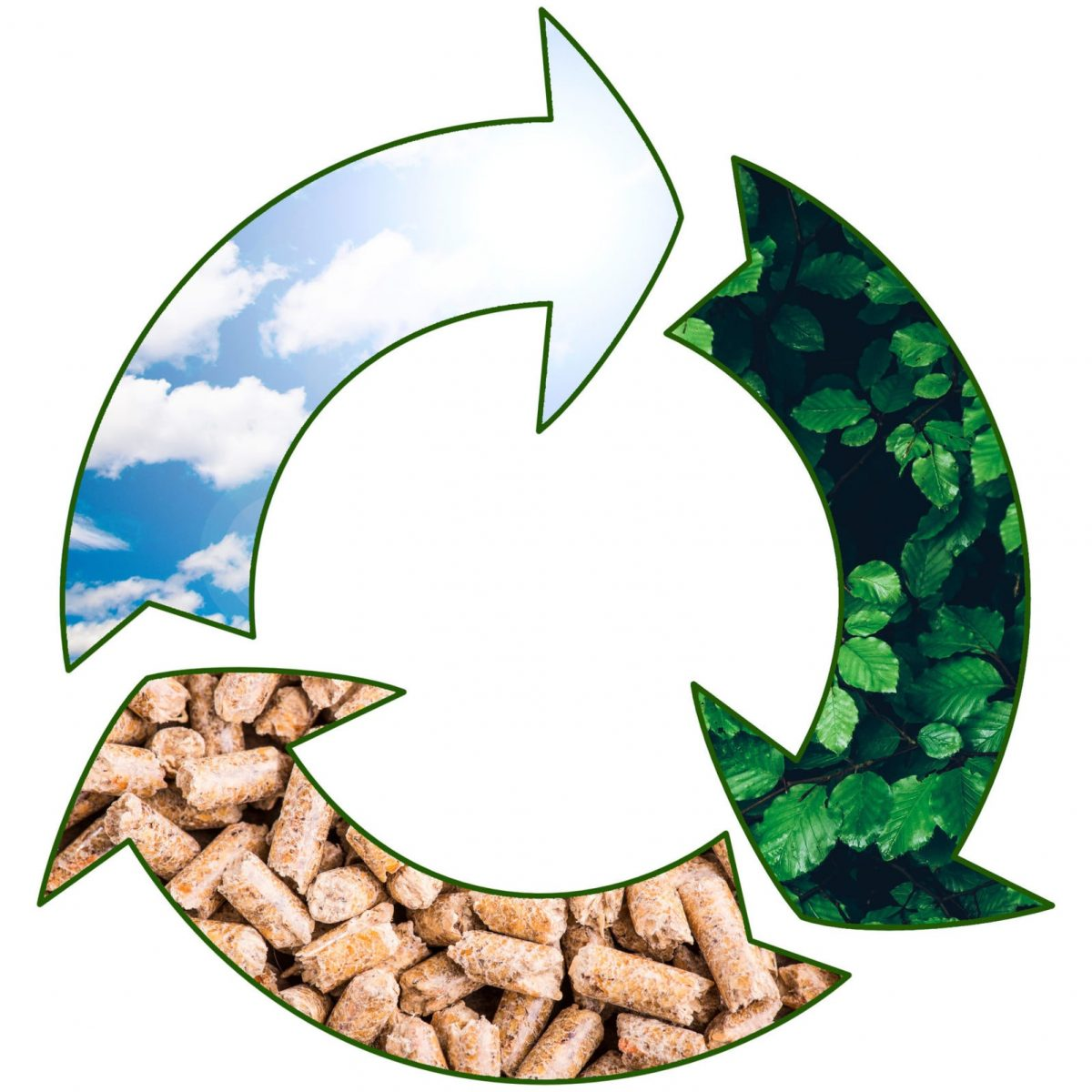 pellet biomass renewable fuel - green renewable sustainable economy